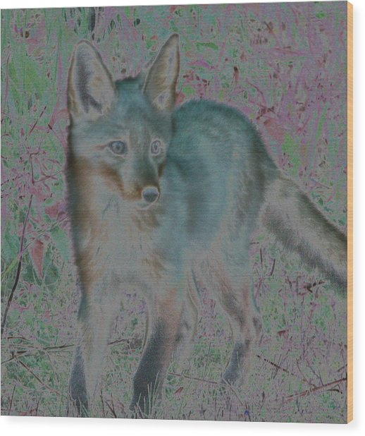 Spirit Fox Wood Print