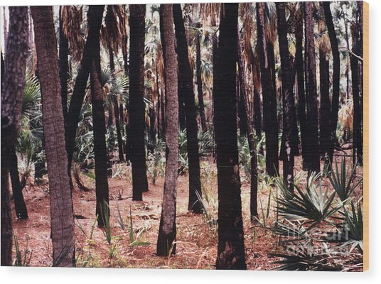 Spirit In The Trees Wood Print by Steven Valkenberg