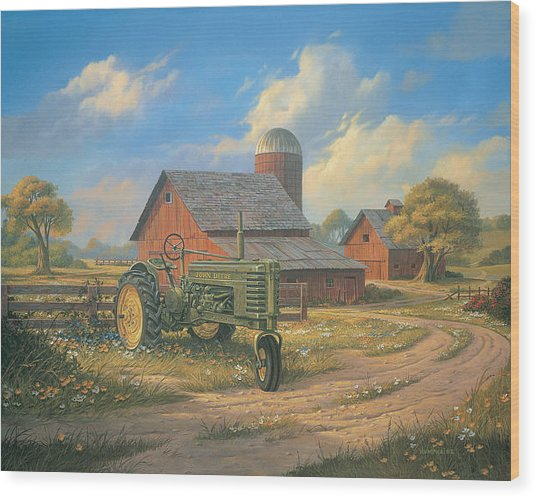 Spirit Of America Wood Print