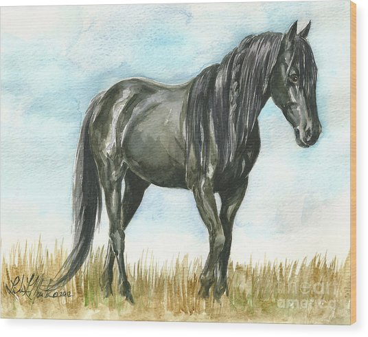 Spirit Wild Horse In Sanctuary Wood Print