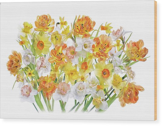 Spirited Wood Print by Jacky Parker