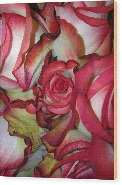 Spirited Rose  Wood Print