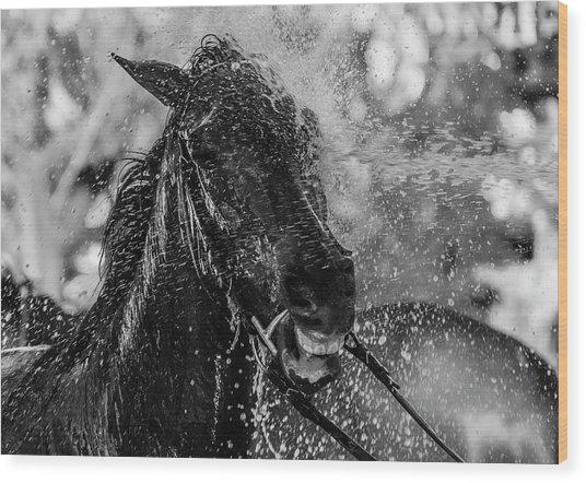 Splash Wood Print by Andr??s Pluchinotta