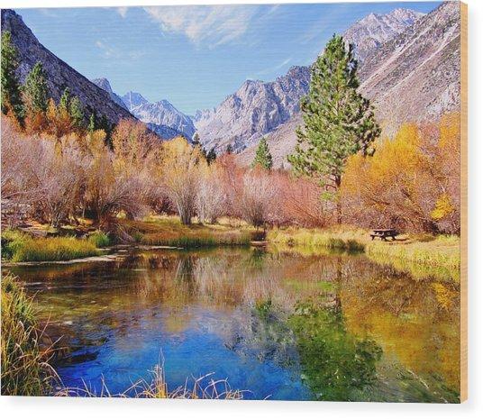Splendor Of Fall Wood Print