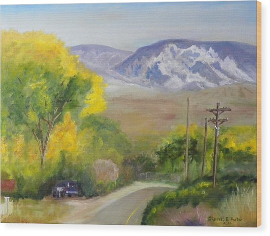 Split Mountain On Golf Course Road Wood Print