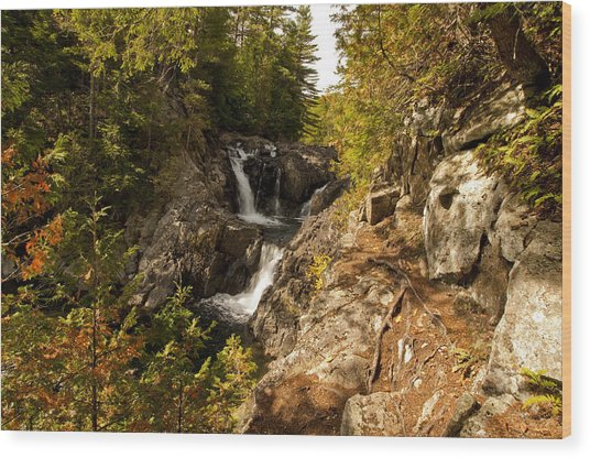 Split Rock Falls  Wood Print