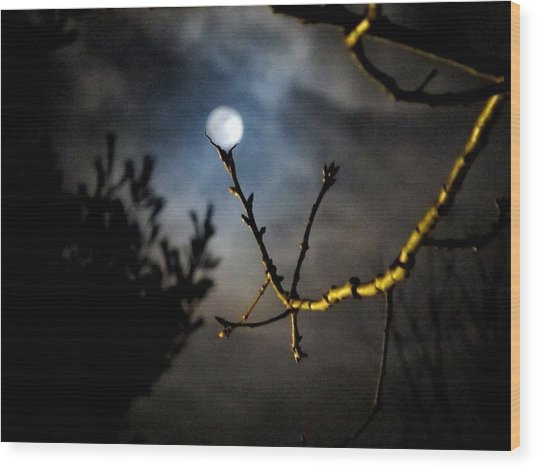 Spooky Moon Wood Print
