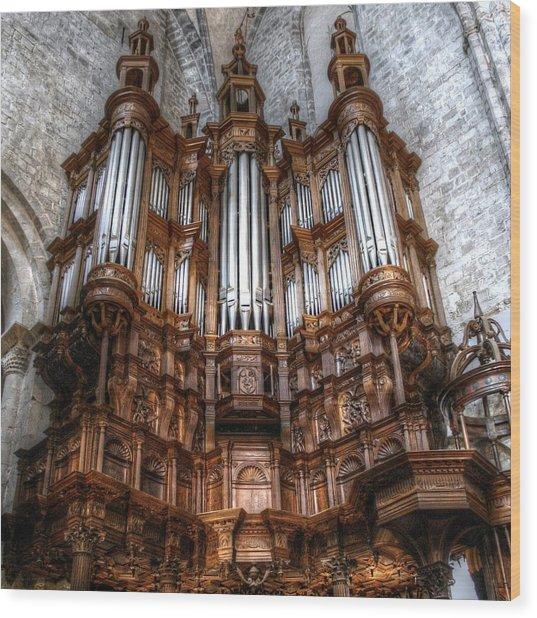 Spooky Organ Wood Print