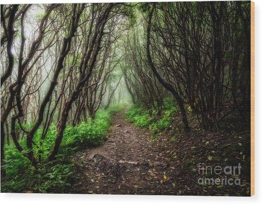 Spooky Trail Wood Print