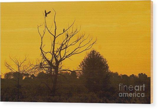 Spooky Tree Wood Print by Joseph Williams