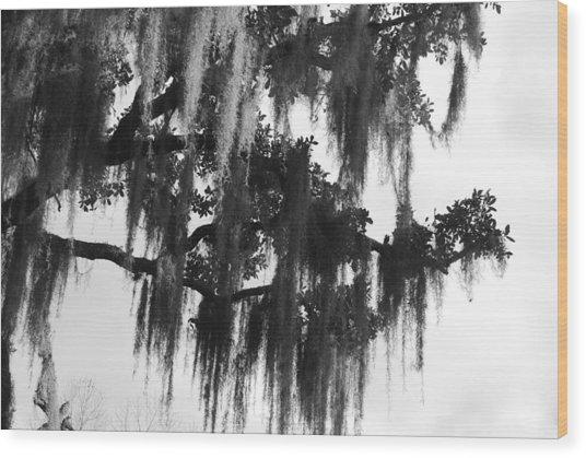 Spooky Trees Wood Print by Cyndi Lenz