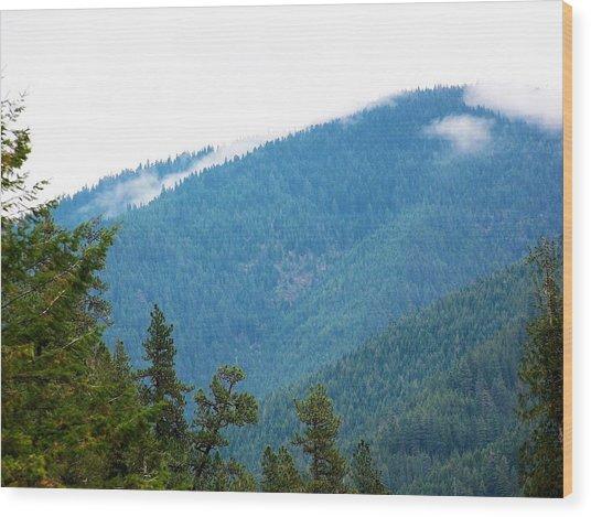 Spot Of Fog Wood Print