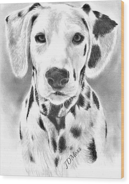 Spots Everywhere Wood Print by Janet Moss