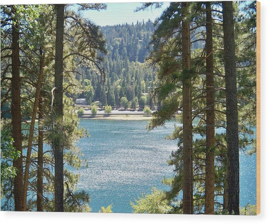 Forrest Mountain Trees Lake Scenic Photography Lake Gregory San Bernardino California - Ai P. Nilson Wood Print