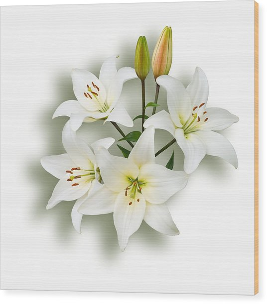 Spray Of White Lilies Wood Print