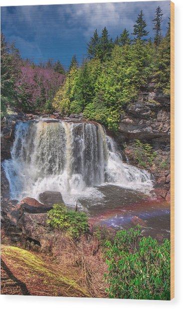 Spring At Blackwater Falls Wood Print