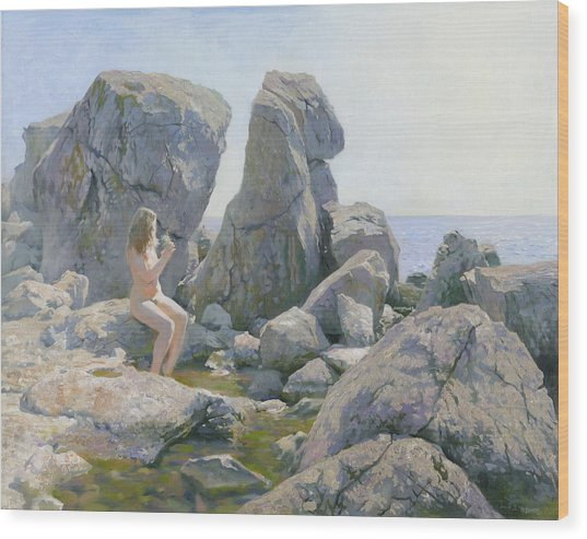 Spring At The Rock Shore  Wood Print