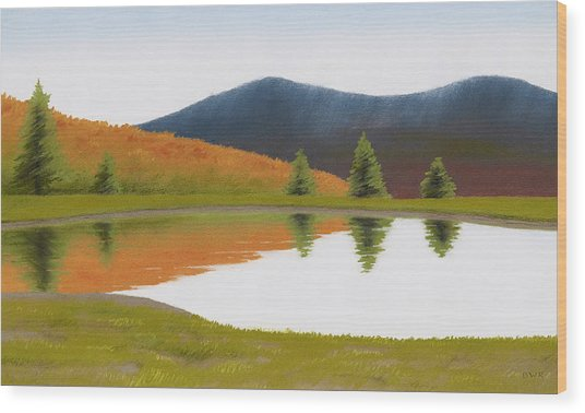 Spring At Three Sisters Pond Wood Print by Bruce Richardson