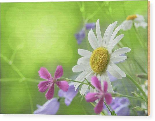 Spring Background Wood Print by Pobytov