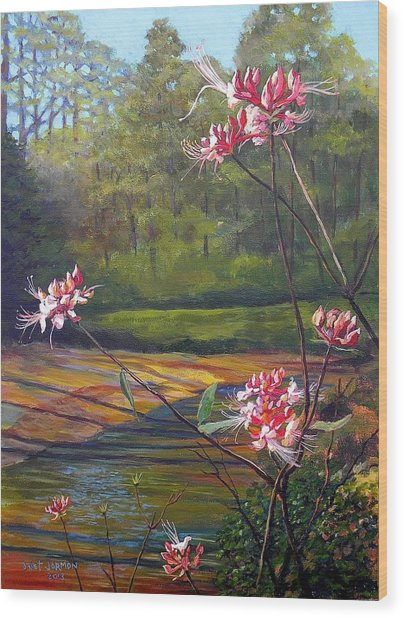 Spring Blooms On The Natchez Trace Wood Print