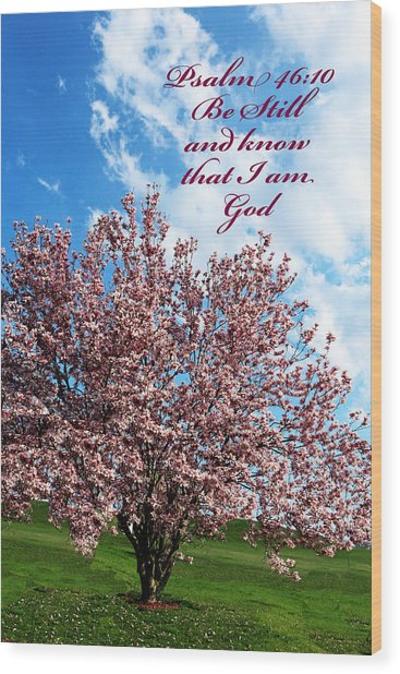 Spring Blossoms With Scripture Wood Print
