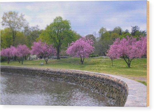 Spring Cove Wood Print