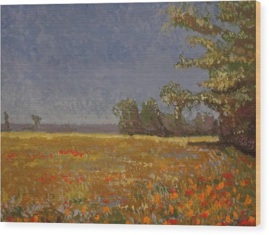 Spring Field Wood Print by Paul Benson