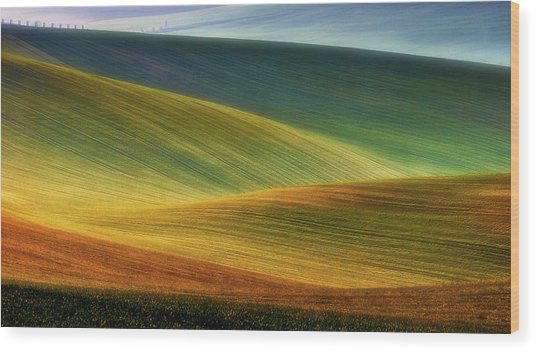 Spring Fields Wood Print by Piotr Krol (bax)