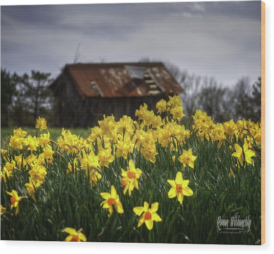 Spring Finally Wood Print