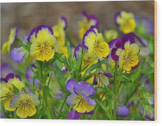 Spring Garden Wood Print by Marjorie Tietjen
