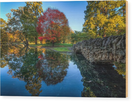 Spring Grove In The Fall Wood Print