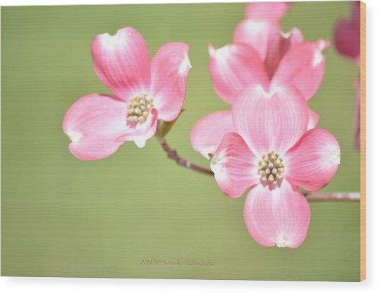 Spring Harbinger Wood Print