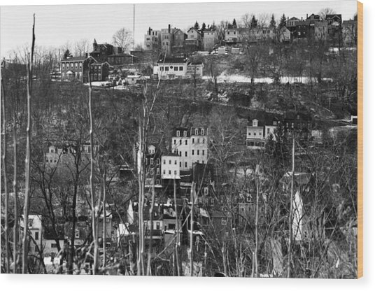 Spring Hill From Troy Hill In Pittsburgh Wood Print by Eric Miller