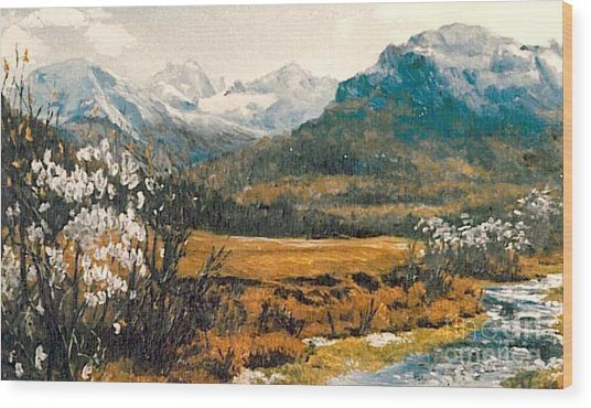 Spring In France Wood Print by Sorin Apostolescu