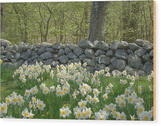 Spring In The Country Wood Print