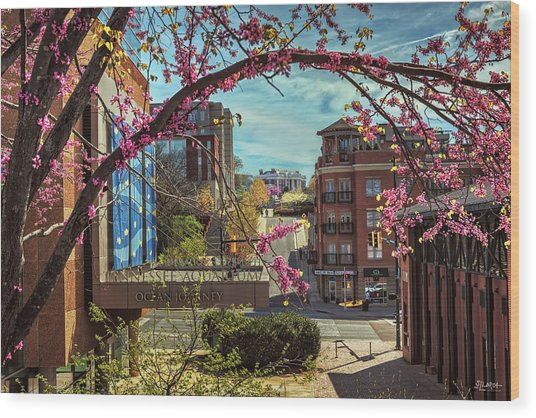 Spring In The Scenic City Wood Print