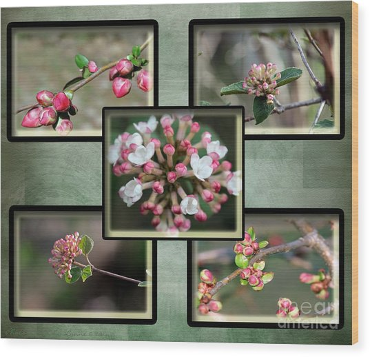 Spring Is Here - Green Wood Print