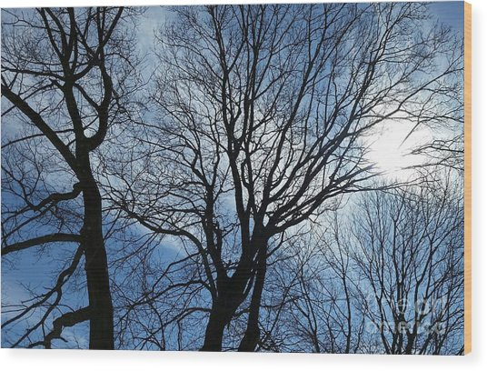 Spring Is In The New England Air Wood Print