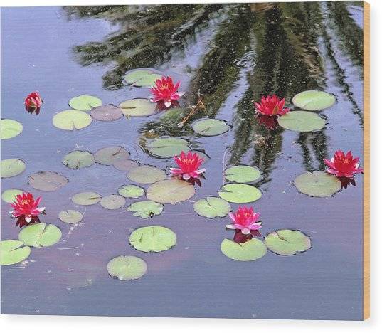 Spring Lilly Wood Print