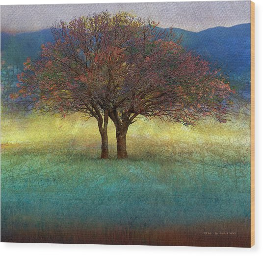 Lone Tree Colorado: Spring Lone Tree Painting By R Christopher Vest