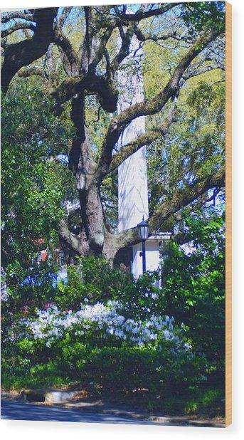 Spring Monolith Wood Print