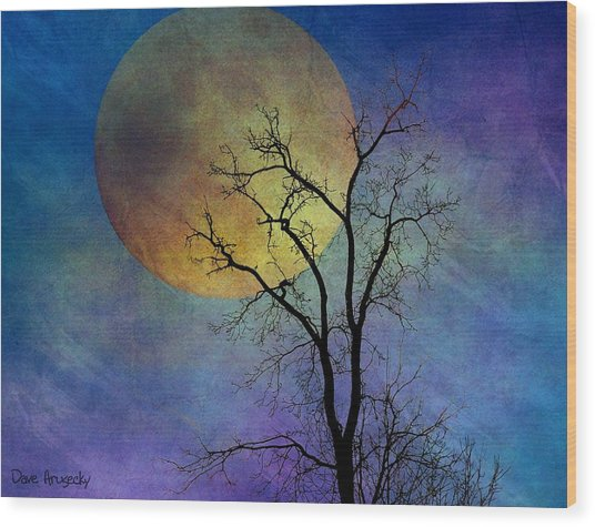 Spring Moon Wood Print by Dave Hrusecky
