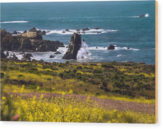 Spring On The California Coast By Denise Dube Wood Print