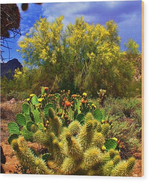 Spring On The Desert Wood Print