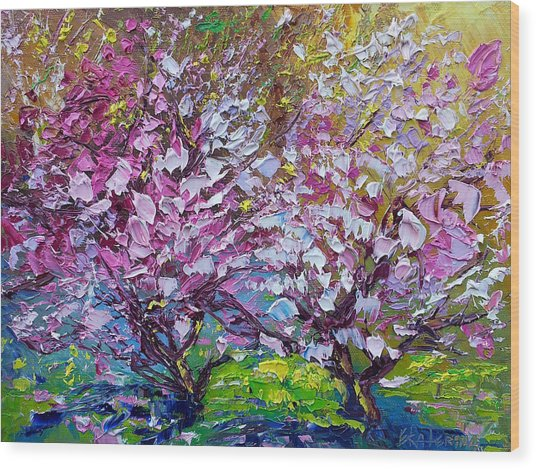 Spring Painting Of Pink Flowers On Magnolia Tree Fine Art By Ekaterina Chernova Wood Print