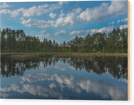 Spring Pond Wood Print by Jim Neal