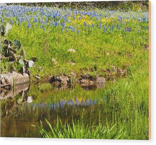 Spring Reflection Wood Print by Thomas Pettengill