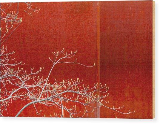 Spring Rust Wood Print