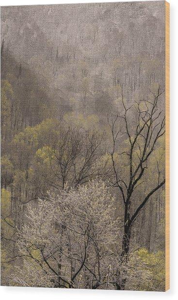 Spring Snow Wood Print by Tom  Reed