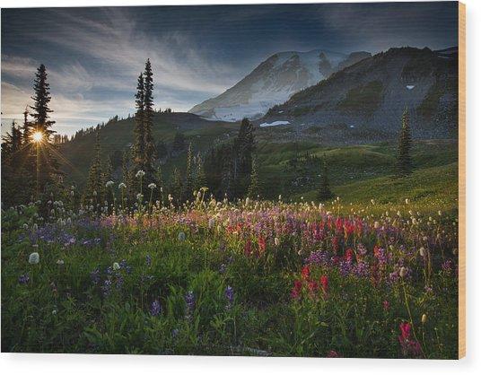 Spring Time At Mt. Rainier Washington Wood Print by Larry Marshall